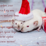 Картинки поздравления с Новым Годом Крысы