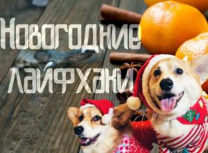 как сделать украшения из мандаринов на Новый год