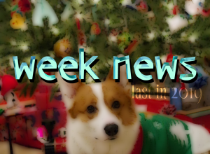 новости последней недели 2019
