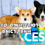 Выставка CES 2020: ожидаемые анонсы