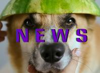 Новости из мира гаджетов