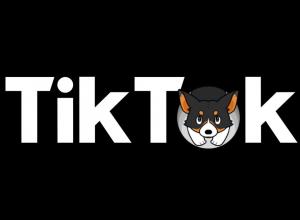 Раскрутка TikTok