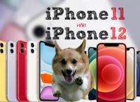iPhone 12 или iPhone 11
